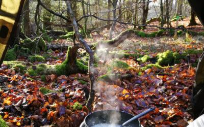 På tur i Rold Skov