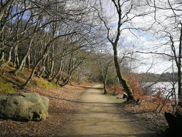 Sti rundt om Store Økssø